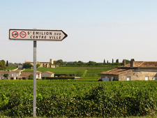 St Emilion Sign & Vines