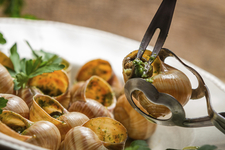 French Escargot