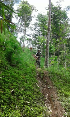 Mount Abang To Klungkung - Advanced Mtb Tour