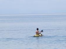Kayak Dolphin