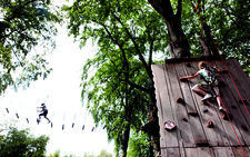 Climbing Wall Trees Suspension Bridge