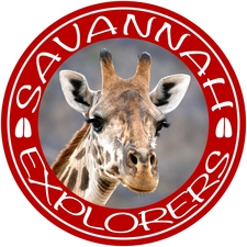 Savannah Explorers Smaller4web