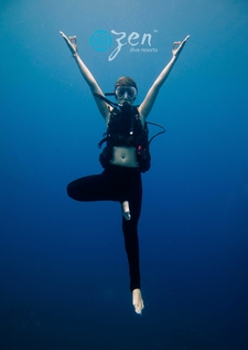 Zen Harmony Diving