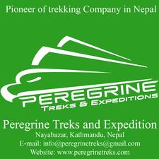 Peregrine Logo For Scoial Website
