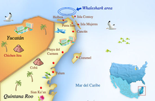 A1 Whaleshark Map