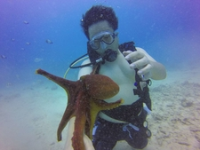 Hawaii Scuba Diving 83