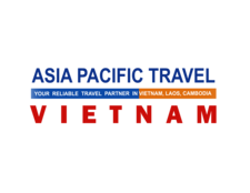 Logo Ap Transparent1