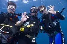 Similan Diving Safaris Divers