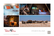 Xenia Travel Portfolio 019