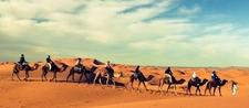 Camel Trekking Back To The Village Of Merzouga