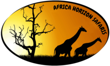 Africa Horizon Safaris Logo Medium