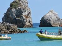 Boat Trip SeaBookings