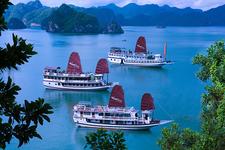 Swan Cruises Halong