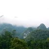 Xuân Sơn National Park