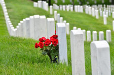 National Cemetery Tour
