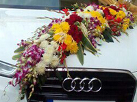 Wedding Audi Costa Car Travels