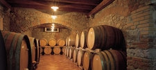 Wine Barrels Istria
