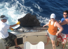 4 A Huge Sailfish Caught While Sport Fishing Off Miami Beach