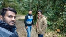 Guests Trekking Through A Forest In Sikkim