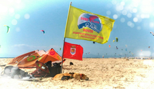 Bandera Perritas Inv