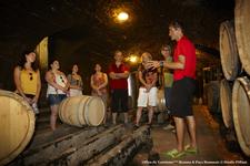 Visit Cellar