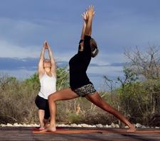Warrior 1 Yoga Safari Namibia