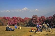 Annapurna Luxury Lodge Trek1