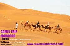 Desertcamp