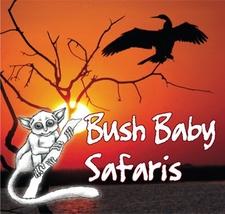 Bushbaby Logo