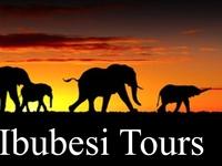 Ibubesi Tours