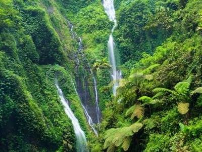 Madakaripura Waterfall Deep Forest Waterfall In East Java Indonesia
