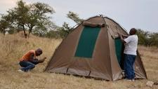 Camping Preparations Safari Makers Crew