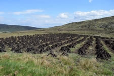 Drying Peat Near Port