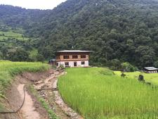 Bhutan Farm Stay Travel