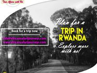 African Safari Journeys
