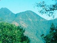Mount Pauna