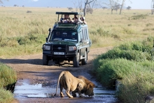 Nninzi Tours And Safari Holiday Tour Company Uganda East Africa A Www Nninzitours Com