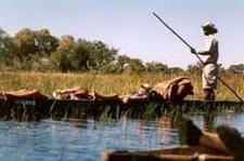 Okavango Makoro 2