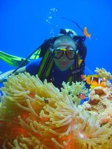 Hurghada Saferi Diving