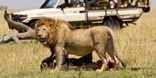 Serengeti Gamedrives 1600x800