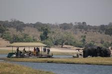 Boat Cruise Chobe