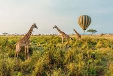 Ballooning At Masai Mara