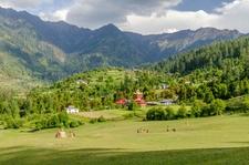 Shangarh - The Green Meadows