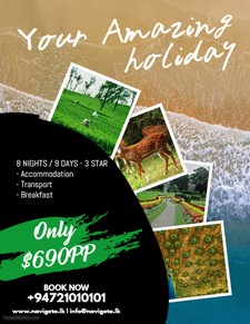 Copy Of Holiday Travel Flyer Template 2
