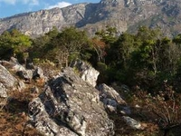 Chimanimani National Reserve