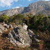 Monte Binga