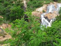 Phophonyane Falls Nature Reserve