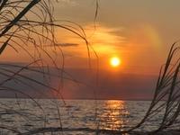 Niassa Reserve