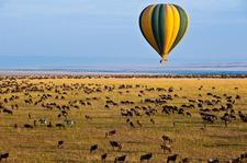Balloon Safari
