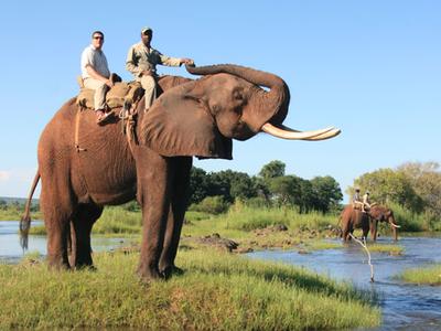 Elephant Back Safaris Victoria Falls